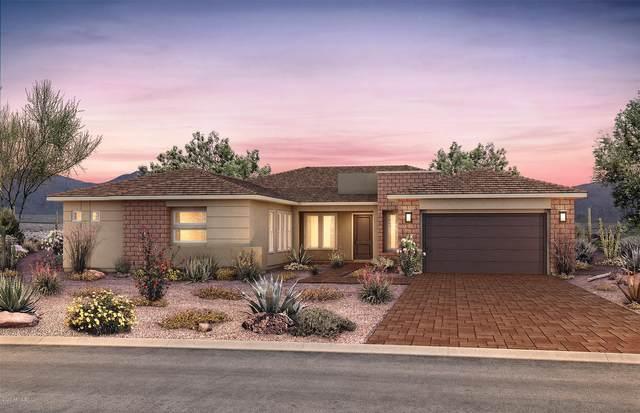 2870 E Cashman Drive, Phoenix, AZ 85050 (MLS #6068709) :: Lucido Agency