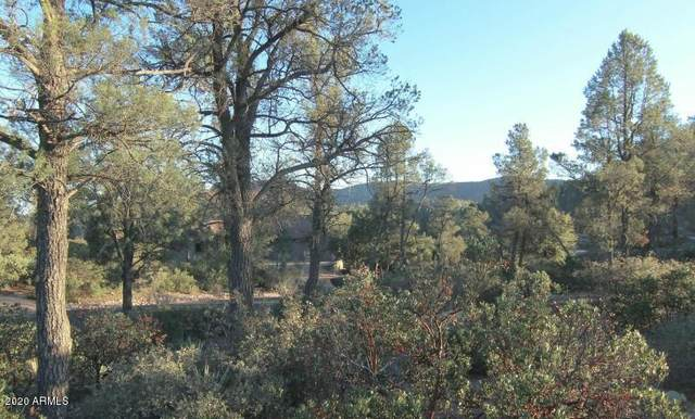 2400 E Rim Club Drive, Payson, AZ 85541 (MLS #6068814) :: Devor Real Estate Associates