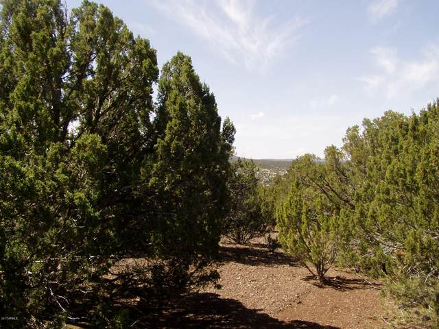 lot 32 Ricks Road, Concho, AZ 85924 (MLS #6068825) :: NextView Home Professionals, Brokered by eXp Realty