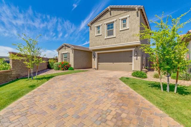 988 W Yellowstone Way, Chandler, AZ 85248 (MLS #6068869) :: Klaus Team Real Estate Solutions