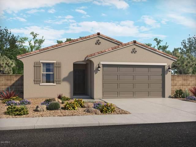 40492 W Jenna Lane, Maricopa, AZ 85138 (MLS #6068926) :: Revelation Real Estate