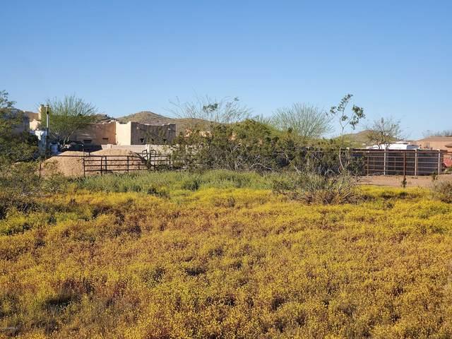 1306 E Villa Cassandra Drive, Phoenix, AZ 85086 (MLS #6068927) :: The Daniel Montez Real Estate Group