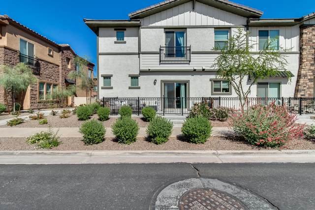 2764 S Cavalier Drive #101, Gilbert, AZ 85295 (MLS #6069066) :: Yost Realty Group at RE/MAX Casa Grande