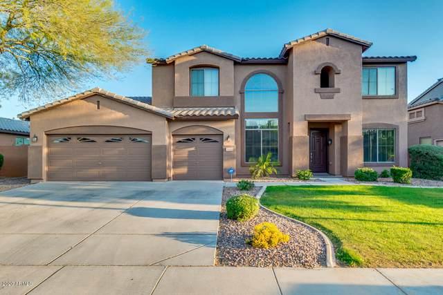 3115 E Mead Drive, Chandler, AZ 85249 (MLS #6069154) :: Klaus Team Real Estate Solutions