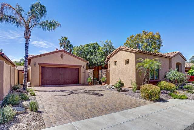 5621 E Grovers Avenue, Scottsdale, AZ 85254 (MLS #6069213) :: Devor Real Estate Associates