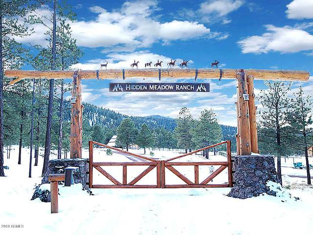 83 N County Road N1330 Road, Greer, AZ 85927 (MLS #6069283) :: Conway Real Estate