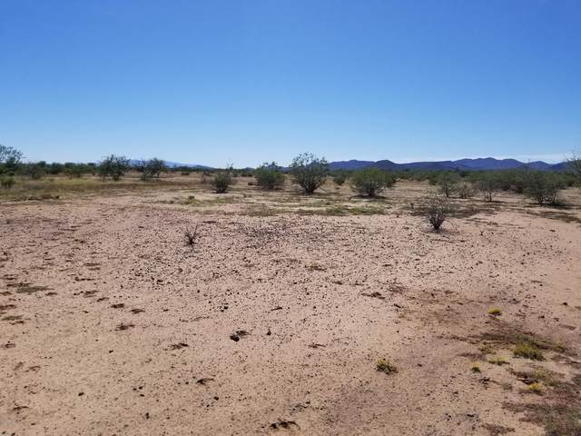 19/20 E Saddle Trail, Marana, AZ 85653 (MLS #6069605) :: Revelation Real Estate