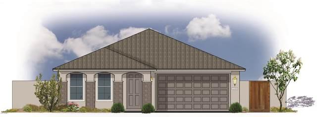 5071 N 84TH Drive, Glendale, AZ 85305 (MLS #6069609) :: Klaus Team Real Estate Solutions