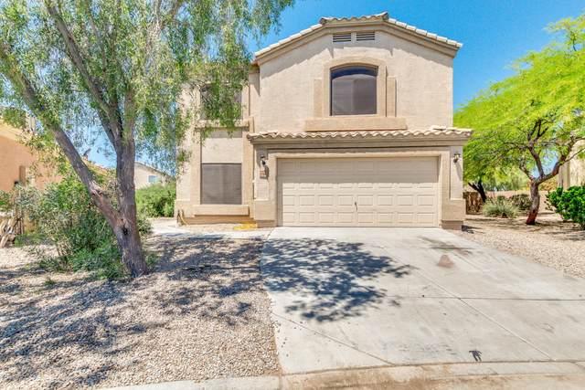 23794 N Tayrien Lane, Florence, AZ 85132 (MLS #6069746) :: Conway Real Estate