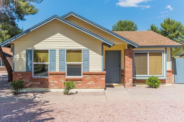5135 E Evergreen Street #1228, Mesa, AZ 85205 (MLS #6069774) :: My Home Group