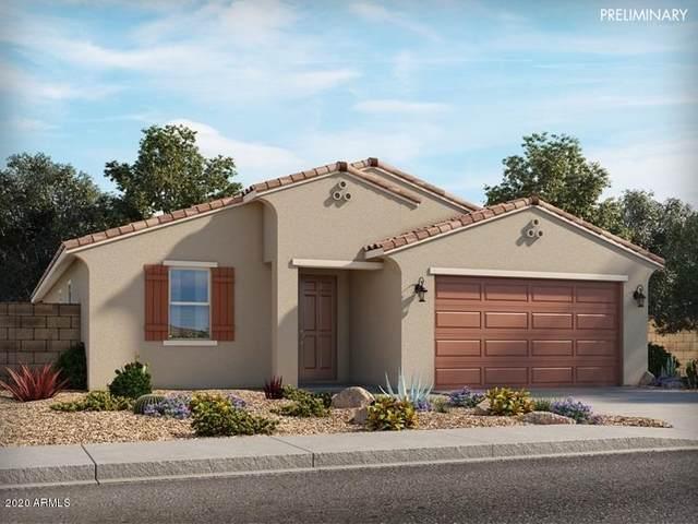 36866 N Camarillo Drive, San Tan Valley, AZ 85140 (MLS #6069838) :: The Property Partners at eXp Realty