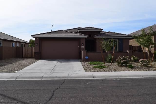 2106 S 122ND Drive, Avondale, AZ 85323 (MLS #6070011) :: The Daniel Montez Real Estate Group