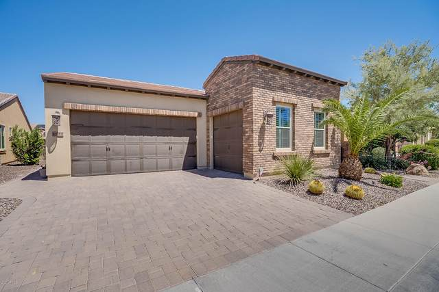 1522 E Elysian Pass, Queen Creek, AZ 85140 (MLS #6070149) :: Balboa Realty