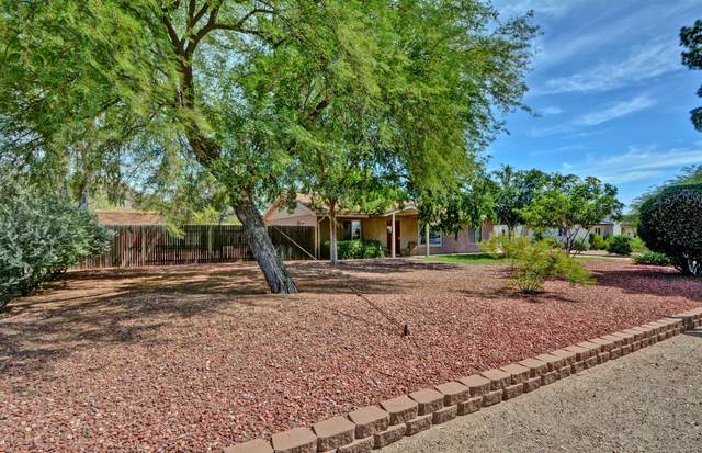 2570 E Sweetwater Avenue, Phoenix, AZ 85032 (MLS #6070209) :: The Everest Team at eXp Realty