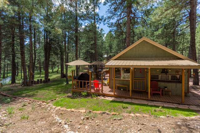 2320 Turkey Trail, Forest Lakes, AZ 85931 (MLS #6070379) :: Conway Real Estate