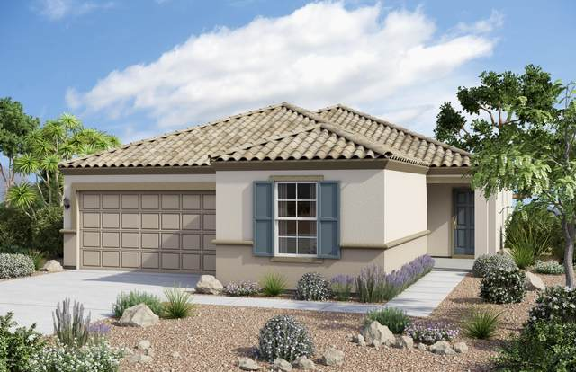 7218 N 126TH Lane, Glendale, AZ 85307 (MLS #6070384) :: Devor Real Estate Associates