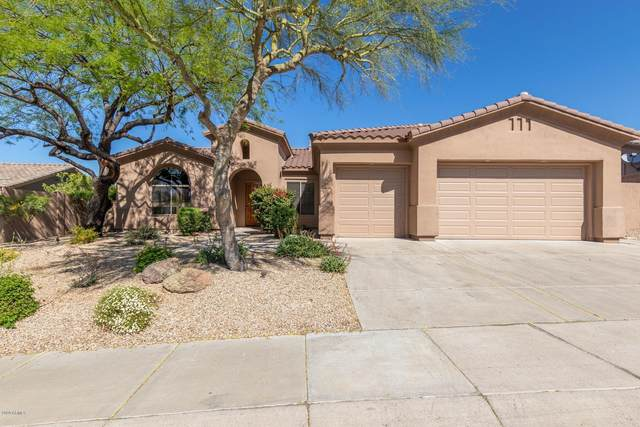 10790 E Palm Ridge Drive, Scottsdale, AZ 85255 (MLS #6070461) :: neXGen Real Estate
