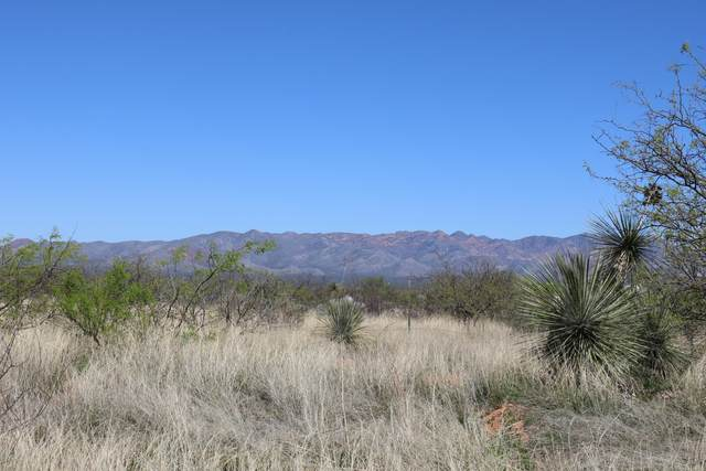 TBD S Hargis Ranch Road, Hereford, AZ 85615 (MLS #6070550) :: The Dobbins Team
