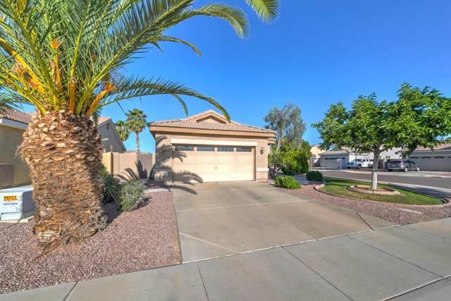960 N Adams Court, Chandler, AZ 85225 (MLS #6070572) :: Lux Home Group at  Keller Williams Realty Phoenix