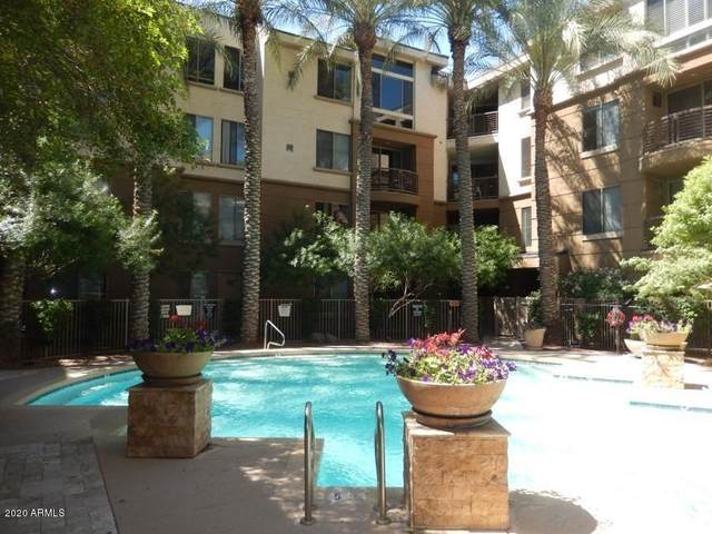 1701 E Colter Street #249, Phoenix, AZ 85016 (MLS #6070617) :: The AZ Performance PLUS+ Team