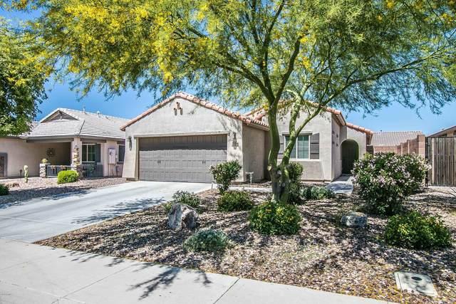 2164 E Stacey Road, Gilbert, AZ 85298 (MLS #6070775) :: Revelation Real Estate