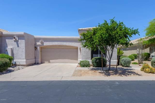 4722 E Casey Lane, Cave Creek, AZ 85331 (MLS #6070966) :: The Daniel Montez Real Estate Group