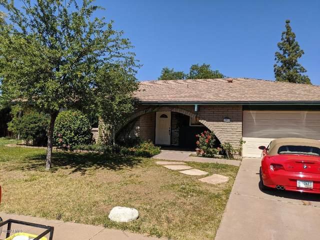 10011 N 41ST Drive, Phoenix, AZ 85051 (MLS #6071145) :: Devor Real Estate Associates