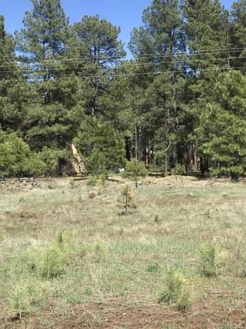 817 N Skylane Road, Pinetop, AZ 85935 (MLS #6071171) :: Conway Real Estate