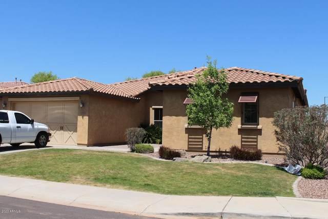 19136 W Colter Street, Litchfield Park, AZ 85340 (MLS #6071177) :: Lux Home Group at  Keller Williams Realty Phoenix