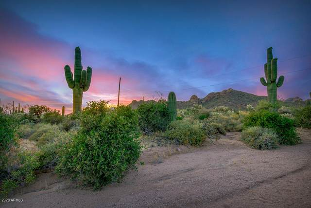 00 E Saddle Butte Street, Apache Junction, AZ 85119 (MLS #6071253) :: Scott Gaertner Group