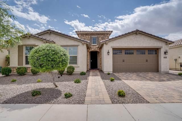 4714 S Centric Way, Mesa, AZ 85212 (MLS #6071779) :: Russ Lyon Sotheby's International Realty