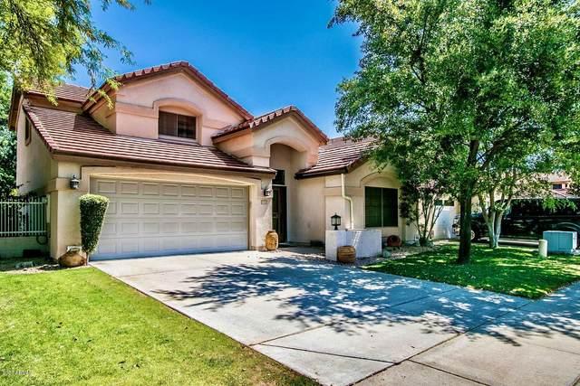 5716 W Harrison Street, Chandler, AZ 85226 (MLS #6071899) :: Lucido Agency