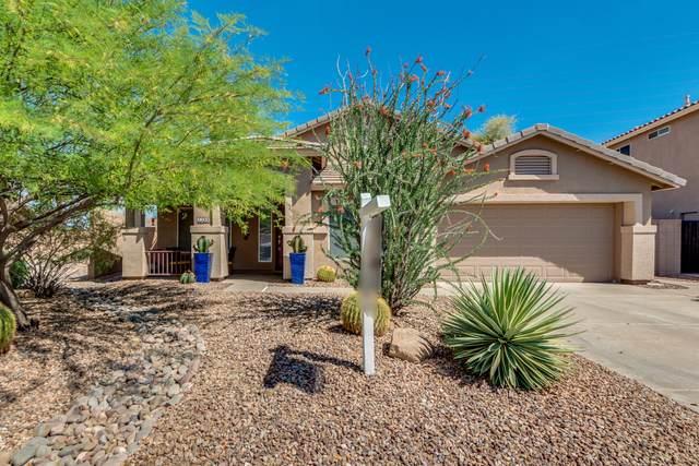 3399 S Joshua Tree Lane, Gilbert, AZ 85297 (MLS #6072089) :: Revelation Real Estate