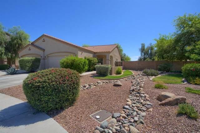 12853 N 87TH Drive, Peoria, AZ 85381 (MLS #6072182) :: My Home Group