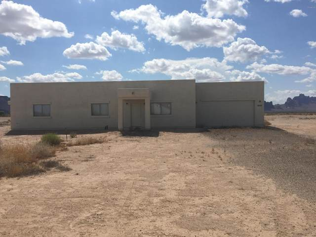 8802 S 537TH Avenue, Tonopah, AZ 85354 (MLS #6072190) :: The Laughton Team