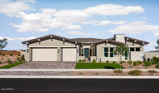 13742 W Bloomington Street, Litchfield Park, AZ 85340 (MLS #6072215) :: Riddle Realty Group - Keller Williams Arizona Realty