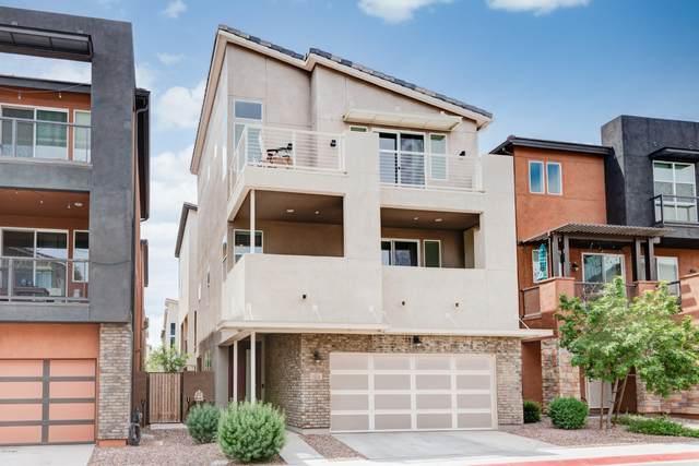 7033 W Corona Drive, Chandler, AZ 85226 (MLS #6072306) :: The Garcia Group