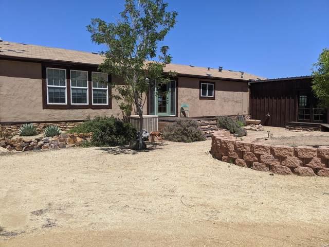 347-367 S Mescal Mountain Road, Globe, AZ 85501 (MLS #6072365) :: My Home Group