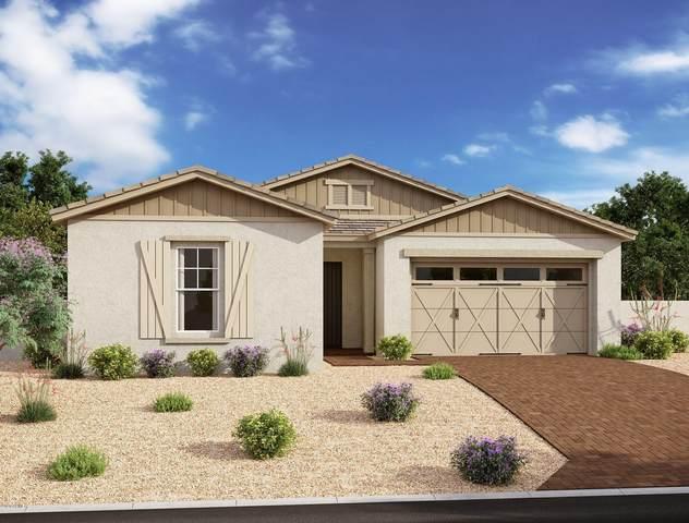 10161 E Supernova Drive, Mesa, AZ 85212 (MLS #6072408) :: Balboa Realty