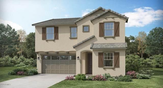 1134 E Thompson Way, Chandler, AZ 85286 (MLS #6072432) :: Klaus Team Real Estate Solutions