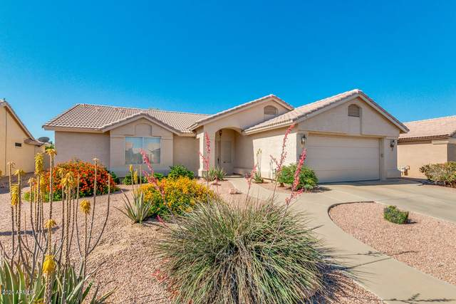 15721 W Piccadilly Road, Goodyear, AZ 85395 (MLS #6073265) :: Revelation Real Estate