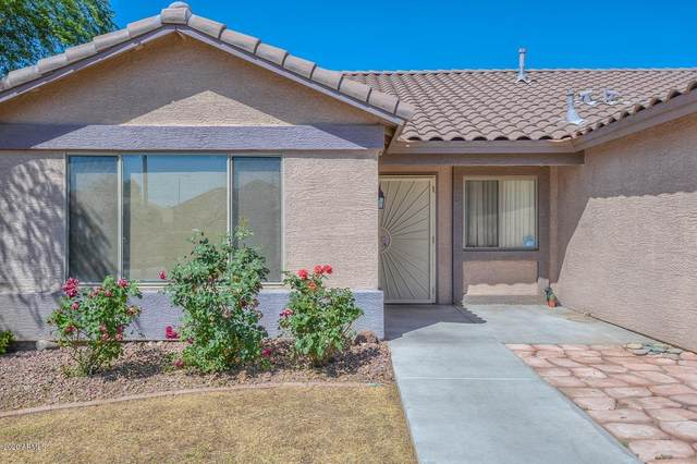 16490 N Oachs Drive, Surprise, AZ 85374 (MLS #6073303) :: Yost Realty Group at RE/MAX Casa Grande
