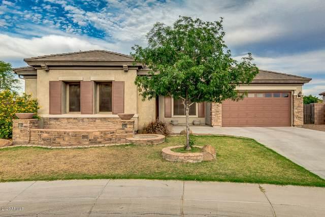 22529 N Celtic Avenue, Maricopa, AZ 85139 (MLS #6073309) :: REMAX Professionals