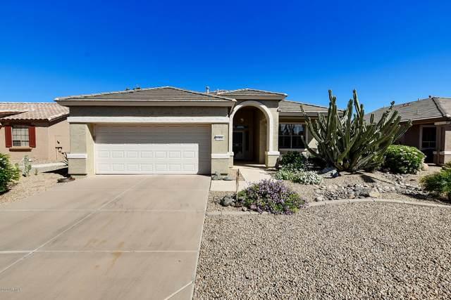 17824 W Traditions Lane, Surprise, AZ 85374 (MLS #6073474) :: Devor Real Estate Associates