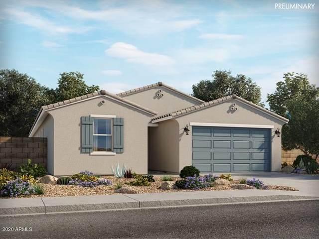 4250 E Caitlin Drive, San Tan Valley, AZ 85140 (MLS #6073552) :: The Property Partners at eXp Realty