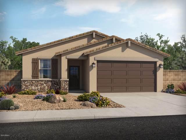 40593 W Jenna Lane, Maricopa, AZ 85138 (MLS #6073561) :: Revelation Real Estate