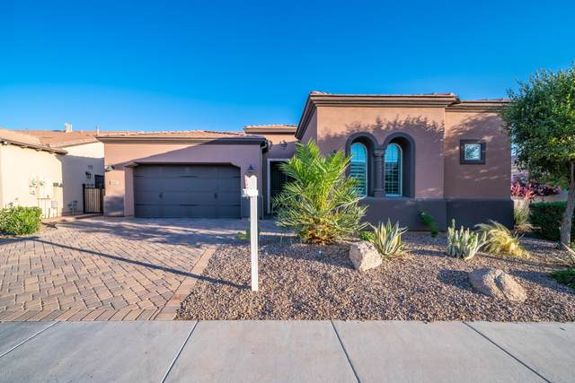 1597 E Elysian Pass, Queen Creek, AZ 85140 (MLS #6073643) :: Balboa Realty
