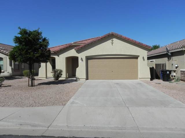 11633 N 153RD Drive N, Surprise, AZ 85379 (MLS #6073647) :: Keller Williams Realty Phoenix
