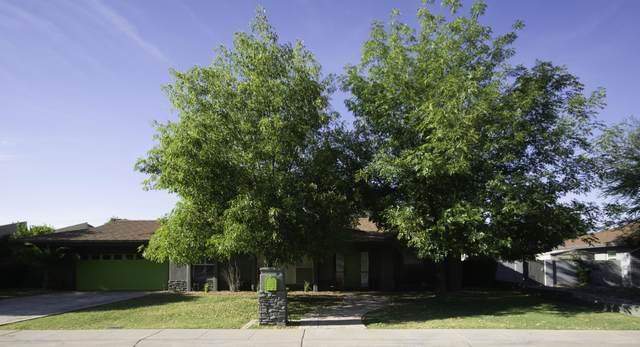 102 E Loma Vista Drive, Tempe, AZ 85282 (MLS #6073737) :: The Daniel Montez Real Estate Group
