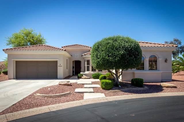 12833 W Rincon Court, Sun City West, AZ 85375 (MLS #6073863) :: Long Realty West Valley